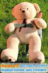 Гигантский  Медведь Михалыч  3,4 метра