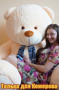 Большой плюшевый медведь 240 см