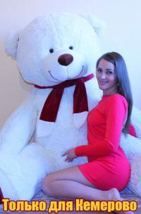 Огромный плюшевый медведь 240 см Белый